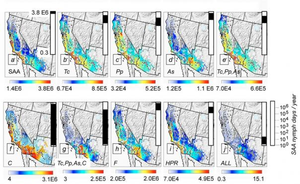 Spotted alfalfa aphid distribution Maps