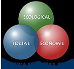 CASAS Global logo